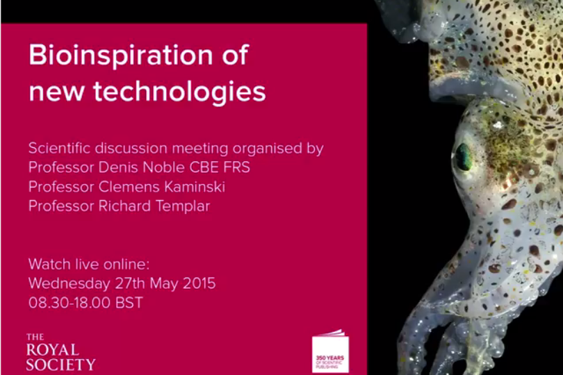 CNIE participates in 'Bioinspiration of new technologies' event by The Royal Society