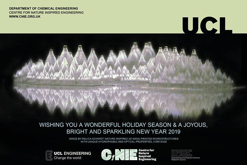 Season's Greetings from CNIE