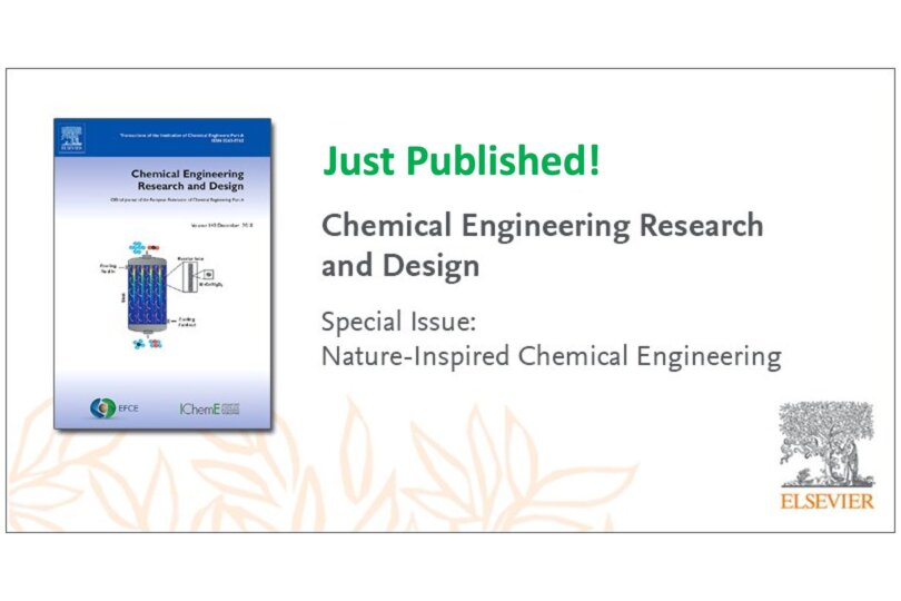 ChERD Special Issue on NICE Processes