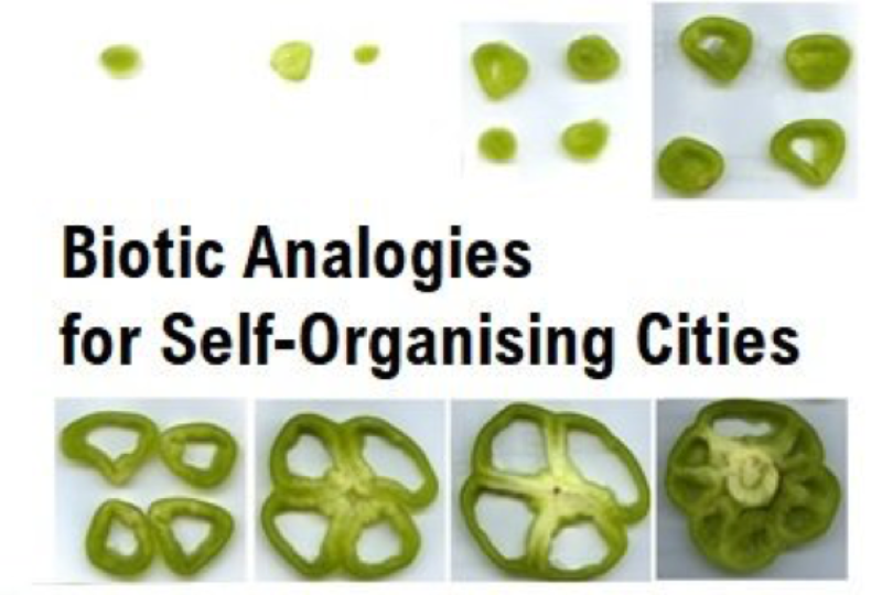 "New published paper on ""Biotic analogies for self-organising cities"""