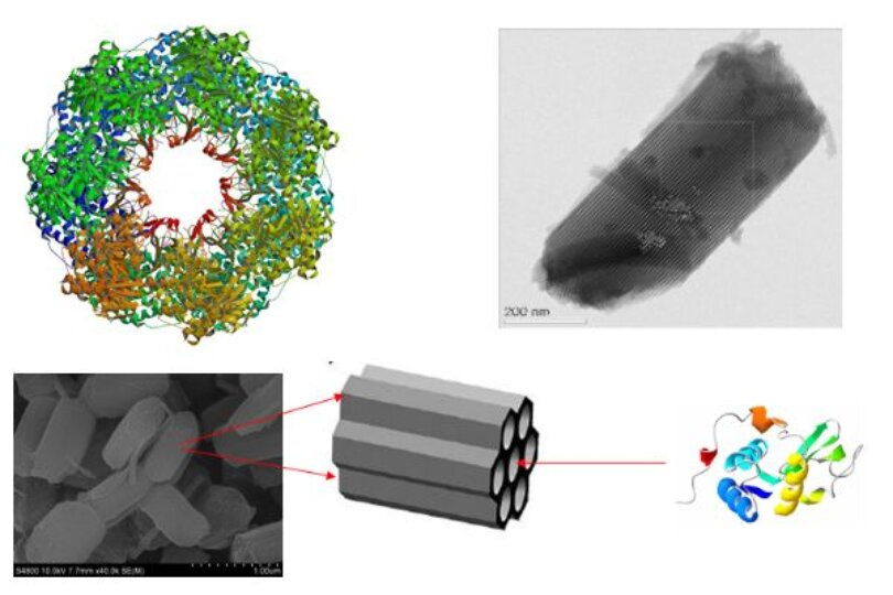 Nature-inspired enhancement of enzyme performance by confinement in nanopores